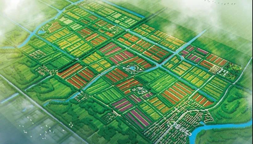 亳州八十里现代农业示范园发展建设规划